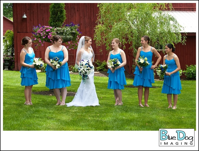 blue-dog-imaging-priestley-savidge-house_0014